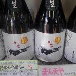 「一(いち)純米大吟醸」 生酒版は完売! 火入れ酒版は3月10日発売予定。