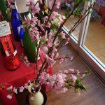 人気の芋焼酎「赤霧島」 2017年春分入荷しました!