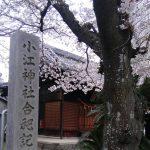 <春のキャンペーン案内>一色屋の海老せんべいプレゼント!(4/7~22)