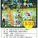 <締め切り間近!>愛知の酒造好適米「夢吟香」の田植え体験(6/10)