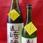 秋のひやおろし解禁!「山﨑醸ひやおろし 純米吟醸原酒」入荷しました。
