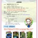 <参加者募集!>9月21日(土)「蓬莱泉収穫祭2019~酒米稲刈り体験~」