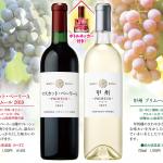 <ご予約受付開始!>日本ワインの新酒「山梨ヌーヴォ 2019」今年は赤と白の2種類!