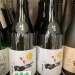 <入荷しました>当店オリジナル純米大吟醸「一(いち)」生原酒(令和元年醸造)。今なら一(いち)の酒粕付き!
