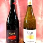 果実感と南国感でいっぱい!シチリア島の赤白ワイン「フェウド マッカリ」