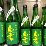 味乗り良く、柔らかく優しい旨味の常滑の秋酒「白老  若水純米ひやおろし」