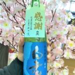白老仕込み再開記念の新酒「若水60%磨き 特別純米無濾過生原酒」ついに入荷しました!